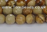 CPJ557 15.5 inches 8mm faceted round picture jasper beads