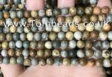 CPJ707 15.5 inches 6mm round rocky butte picture jasper beads