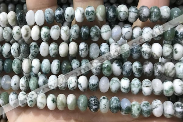 CRB5338 15.5 inches 5*8mm rondelle tree agate beads wholesale