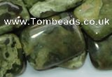 CRH28 15.5 inches 22*30mm rectangle rhyolite beads wholesale