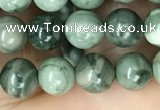 CRM201 15.5 inches 6mm round green mud jasper beads wholesale