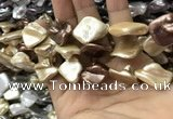 CSB2169 15.5 inches 16*16mm - 18*20mm baroque mixed shell pearl beads