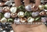 CSB2177 15.5 inches 16*16mm - 20*22mm baroque mixed shell pearl beads
