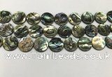 CSB4172 15.5 inches 16*16mm coin abalone shell beads wholesale