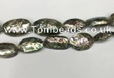 CSB4179 15.5 inches 13*30mm - 15*35mm freeform abalone shell beads