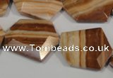 CSL86 15.5 inches 22*25mm freefrom silver leaf jasper beads wholesale