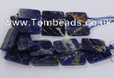 CSO822 15.5 inches 30*50mm - 32*52mm rectangle orange sodalite beads