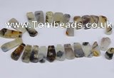 CTD2733 Top drilled 15*25mm - 20*35mm freeform montana agate beads