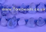 CTD3859 Top drilled 6*8mm - 10*12mm freeform larimar beads