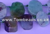CTD3895 Top drilled 12*16mm - 13*18mm freeform Australia chrysoprase beads