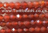 CTG1004 15.5 inches 2mm faceted round tiny red agate beads