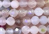 CTG1132 15.5 inches 3mm faceted round tiny rainbow moonstone beads