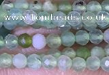 CTG1414 15.5 inches 2mm faceted round Australia chrysoprase beads