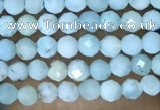 CTG1421 15.5 inches 2mm faceted round larimar beads wholesale