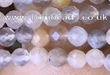 CTG1504 15.5 inches 3mm faceted round moonstone beads wholesale