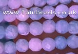 CTG1625 15.5 inches 2.5mm faceted round tiny amazonite beads