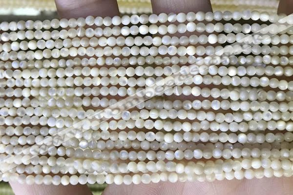 CTG2049 15 inches 2mm,3mm mother of pearl beads