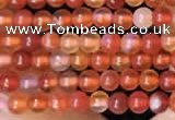 CTG2056 15 inches 2mm,3mm red agate gemstone beads