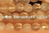 CTG2209 15 inches 2mm,3mm faceted round botswana agate beads
