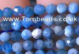 CTG760 15.5 inches 3mm faceted round tiny apatite gemstone beads