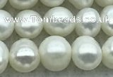 FWP42 14.5 inches 5.5mm - 6mm potato white freshwater pearl strands