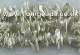 FWP420 15 inches 5*15mm - 8*24mm biwa freshwater pearl beads